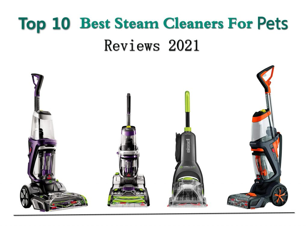 Best Steam Cleaner For Pets Reviews 2021